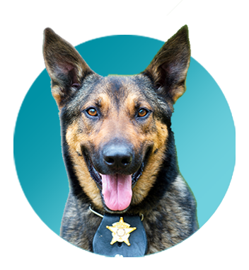The K-9 Courage™ Program from Zoetis
